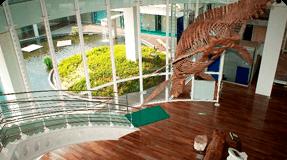 生命の海科学館 イメージ