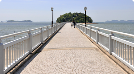 竹島 イメージ