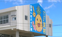 東村のパイナップル集荷所