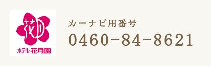 カーナビ番号 0460-84-8621