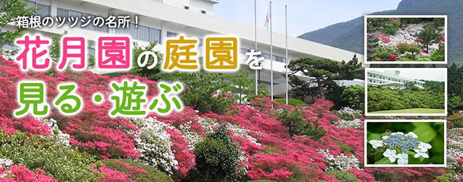 箱根のツツジの名所!花月園の庭園を見る・遊ぶ